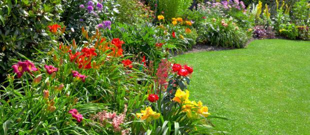 Elérhető áron igényelhet profi kertfenntartást a cégtől.