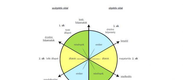filogenetikus modell